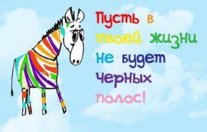 74265391_zebra