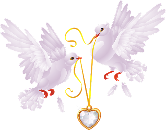 Картинки свадебные фоны с голубями, сделать открытку