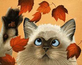 Кот и листья