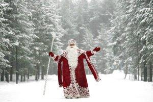 Дед мороз в лесу