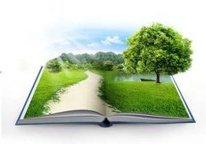 Экологическая книга