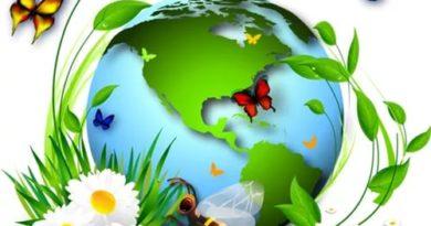 Экология 2017