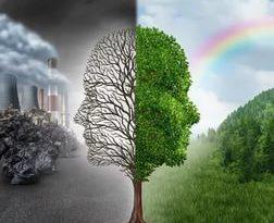 Два лица экологии