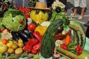 овощьные гномики