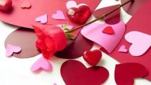 Роза в сердцах
