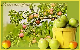 яблочый спас