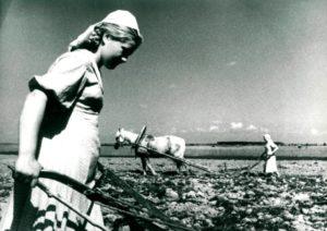 Женщины в годы войны
